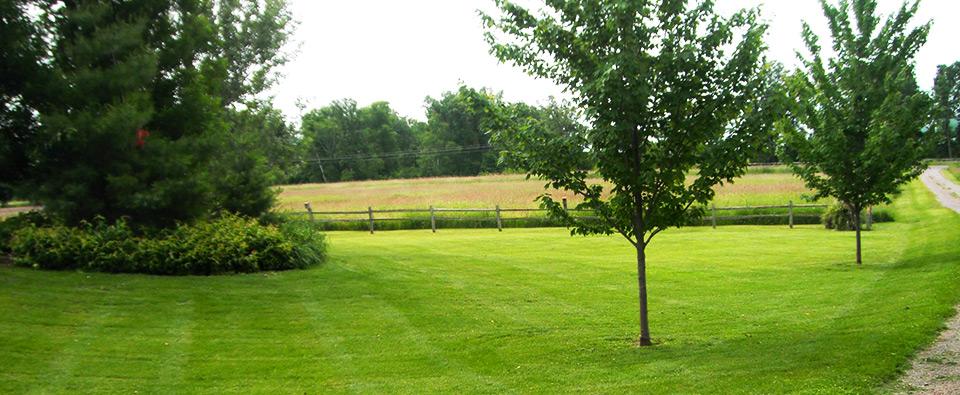 looking good lawn  u0026 landscape maintenance