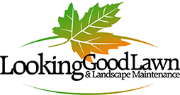 Looking Good Lawn & Landscape Maintenance | St. Cloud Area Lawn Care Services